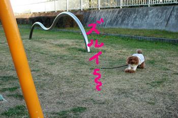 20081207-03kai.jpg