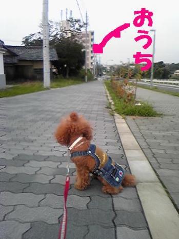 20090704-02kai.jpg