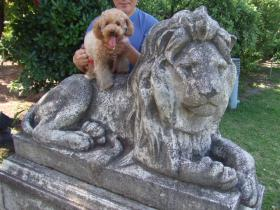 市役所2ライオン像