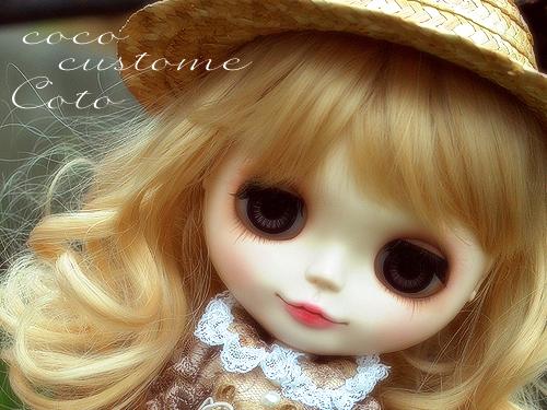 koto_cus01.jpg