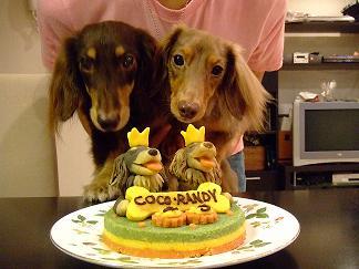 ケーキとパチリ
