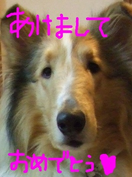DSCF0077blog.jpg