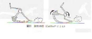ca2.jpg