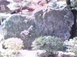 20090419113249