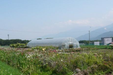村田ばら園