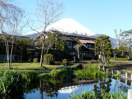 忍野 菖蒲池