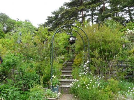 Gardenひぐらし