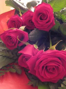 st-valentin 4