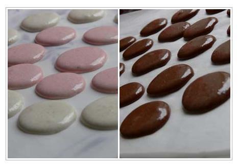 macaron2.jpg