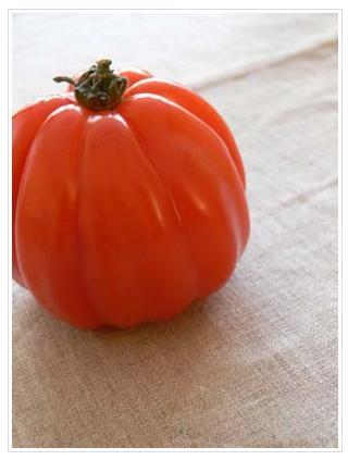 tomate_20090519043359.jpg