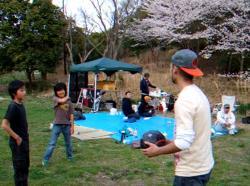 hanami-ryokuti.jpg