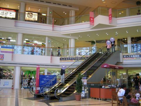 普段は一人でこんなショッピングモールにはこない