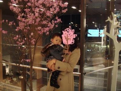 2008.3.29 ミッドタウンでお花見2