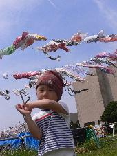 2009鯉のぼりフェスタ
