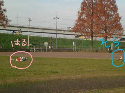 CIMG1718.jpg