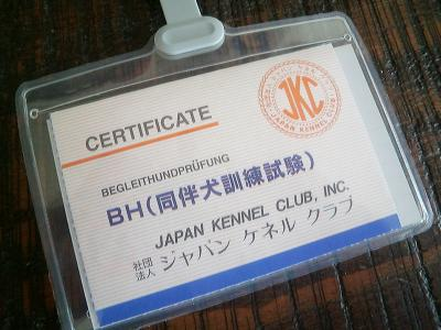 CIMG7859.jpg