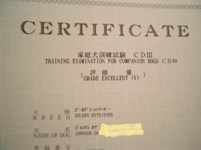 CIMG8807.jpg