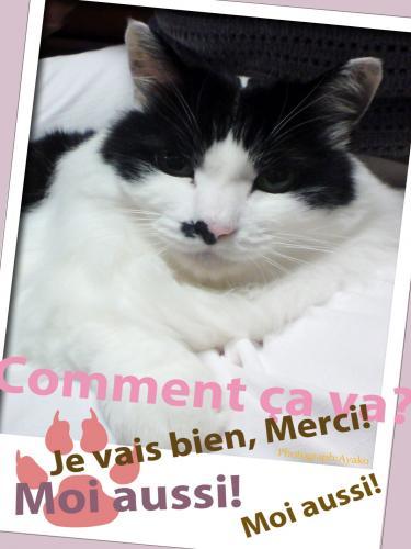 2006+12+25+12+31+Paris+style+post+card+085_convert_20091018230415.jpg
