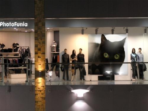 PhotoFunia-227ef3_convert_20090224234008.jpg