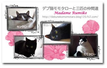 m_rumiko.jpg