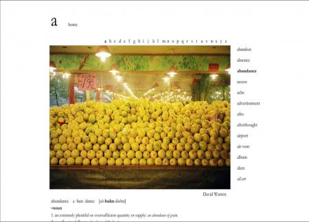 The Photographic Dictionary_2
