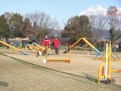 20090125ozenzai1.jpg