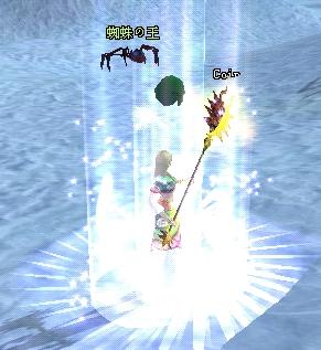 蜘蛛が緑ネームになった瞬間(20080219)