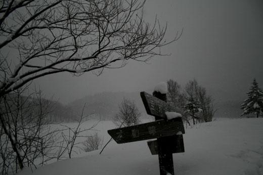 2009-01-19 010-m