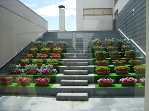 hanakaidan2005.jpg