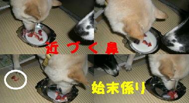 イチゴミルク2