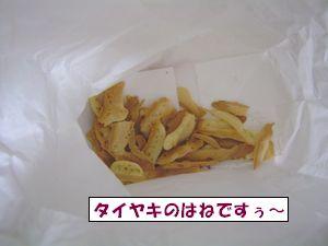 20090417-2.jpg