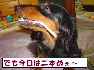20090514-3.jpg