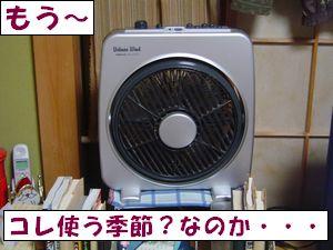 20090517-2.jpg