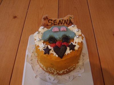 セナケーキ