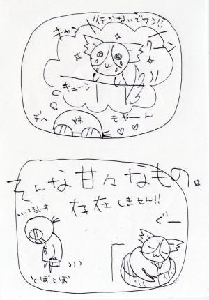 4l-002.jpg