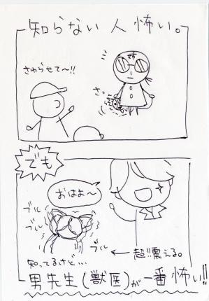 4l-008.jpg