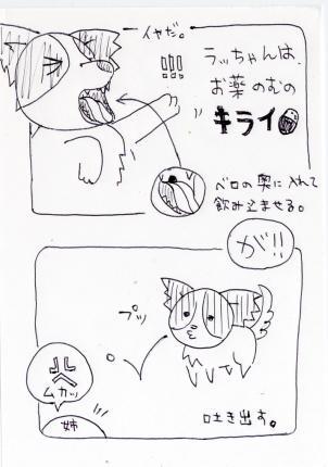 4l-011.jpg