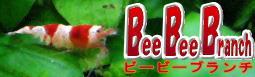 BeeBeeBranch.jpg