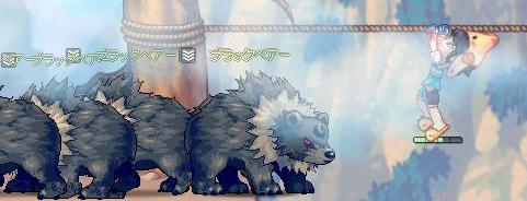 一寸先は熊。