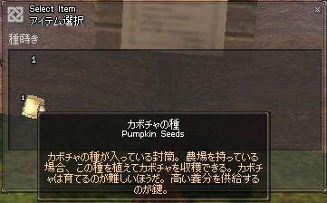 mabinogi_706.jpg