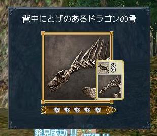 100608 192848背中にとげのあるドラゴンの骨