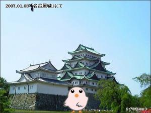 愛知県 名古屋市 中区「名古屋城」
