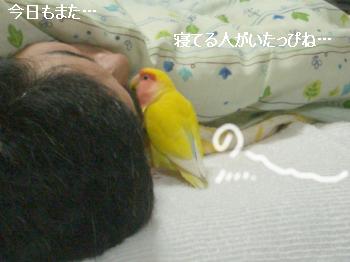 寝てる人1