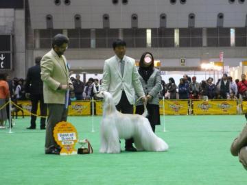 Asia2009marsYuki