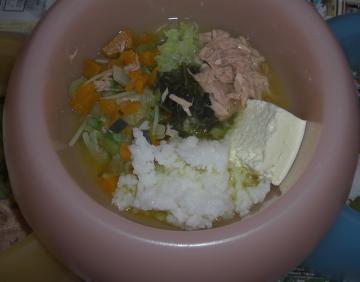 diet diner2008.nov
