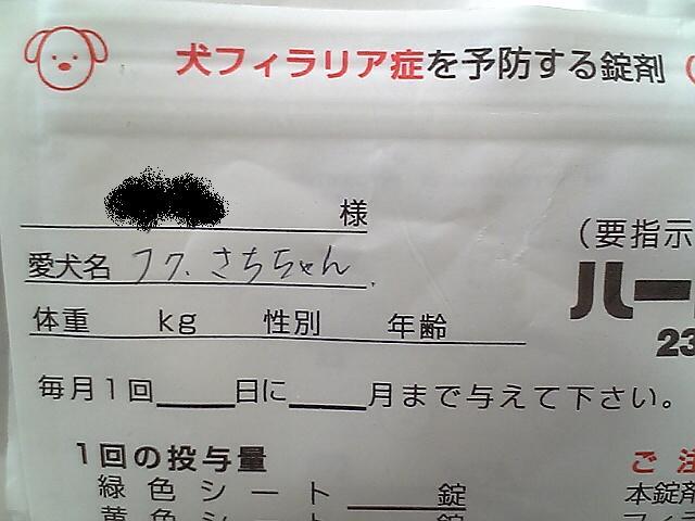 fukusaccyann.jpg