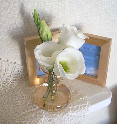 8月の部屋花