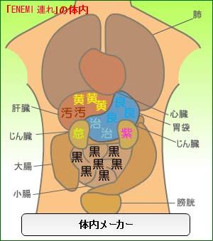20070919体内メーカー(連れ)