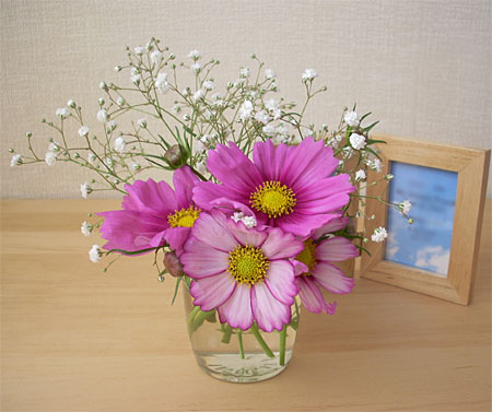 2007100610月の部屋花