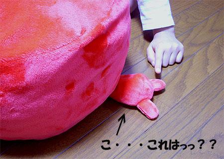 20071103りんちゃん胴体①
